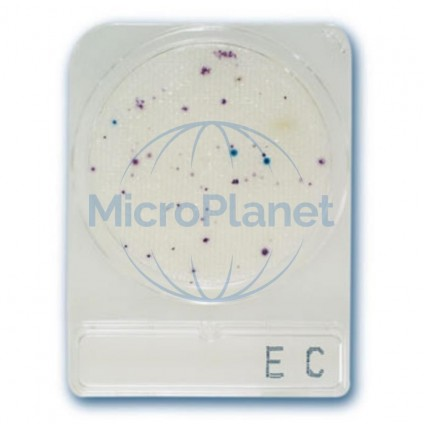 COMPACT DRY EC, placas para E. coli/coliformes. c/920 uds.