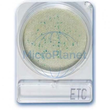 COMPACT DRY ETC, para Enterococos, c/40 uds.