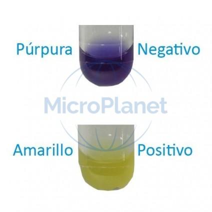 GLUCOSA TEST, test rápido para fermentación glucosa, c/ 30 tubos