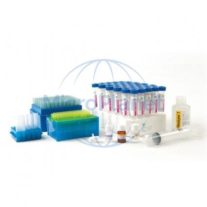 QGA ATP2G REFILL kit, QGA-100C, c/100 test