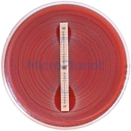 MIC test CEFUROXIME, 0.016 - 256  c/30 tiras CMI