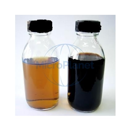 WATER DETECT COLIFORMS, c/ 12 botellas x100 mL